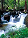 Small Waterfall, Rocky Mountain National Park, Colorado