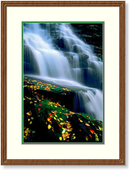 This Image is of Eris Falls in Ricketts Glen State Park, Pennsylvania